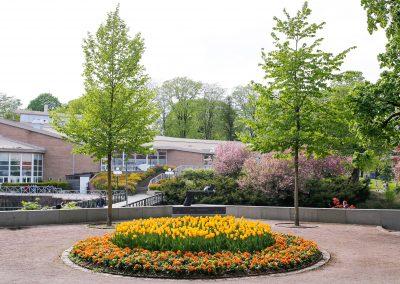 Anna Lindhs park i Borås